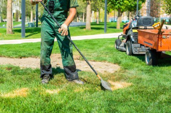 gardener raking